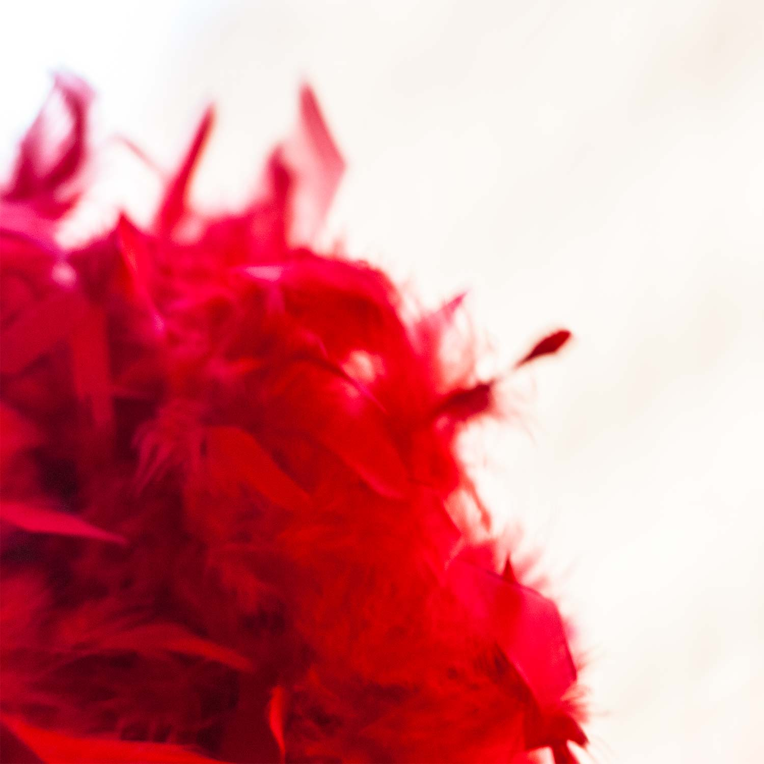 pride_red